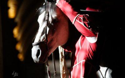 CABALCOR 2018, la feria del caballo en Córdoba