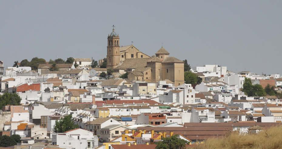 Descubriendo la Provincia: Montilla